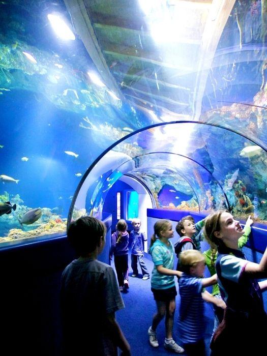 Ausflug zum Antalya Aquarium