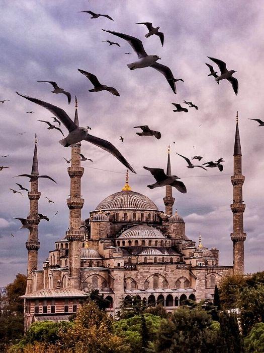 Besichtigungstour durch Istanbul von Alanya