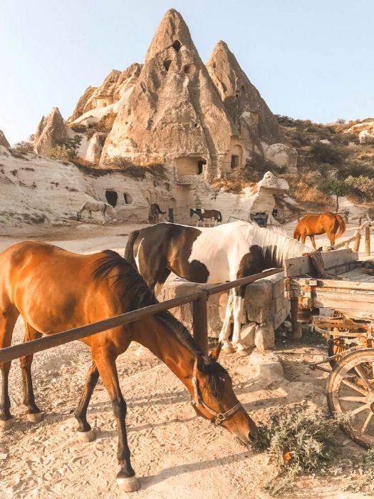 Pferde Reiten in Kappadokien