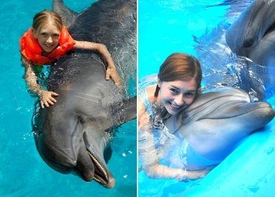 Schwimmen mit Delfinen in Alanya
