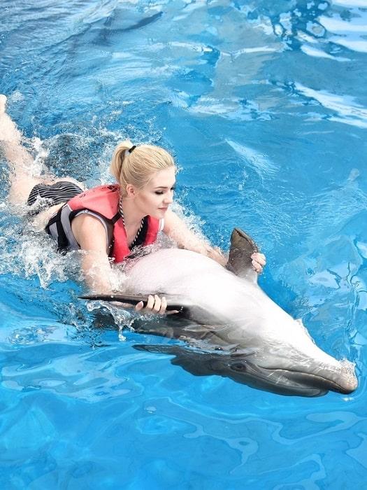 Schwimmen mit Delfinen in Side
